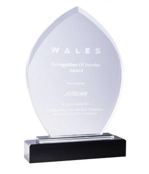Barrington Prestige Shield Crystal Trophy -255mm