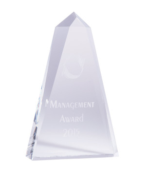 Landmark Pinnacle Crystal Award-160mm