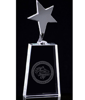 Cosmic Star Crystal Trophy-130mm
