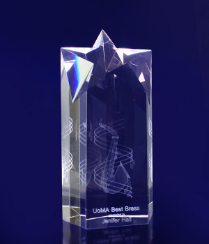 Star Pointed Trophy- 180mm