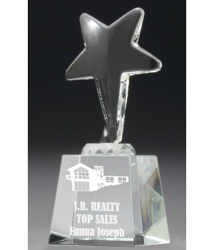 Acclaim Star Crystal Trophy-165mm