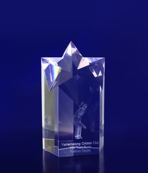 Star Pointed Trophy- 150mm
