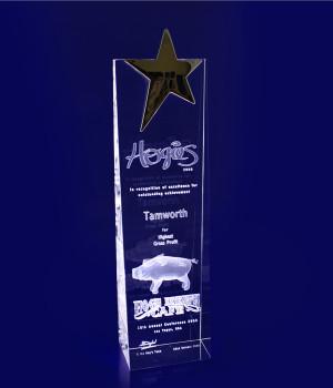 Star Wedge Trophy- 270mm