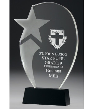 Stellar Star Crystal Trophy-260mm