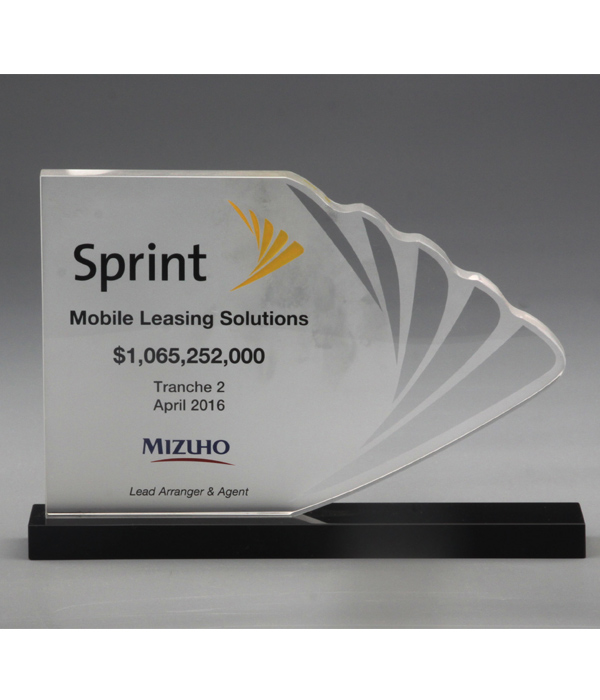 Custom Feathered Edge Frosted Trophy